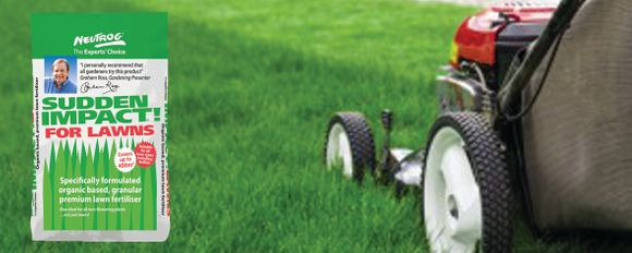 Have your lawn looking lush this Summer!