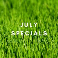 July 2019 Specials