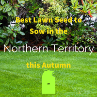 AUTUMN SOWING - Best Lawn Seed to Sow in Northern Territory 2020