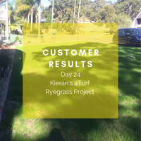 CUSTOMER RESULTS - Kieran's 4Turf Ryegrass Blend