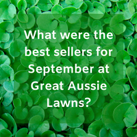 What were the best sellers for September at Great Aussie Lawns?