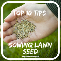 Top 10 Tips - Sowing Lawn Seed
