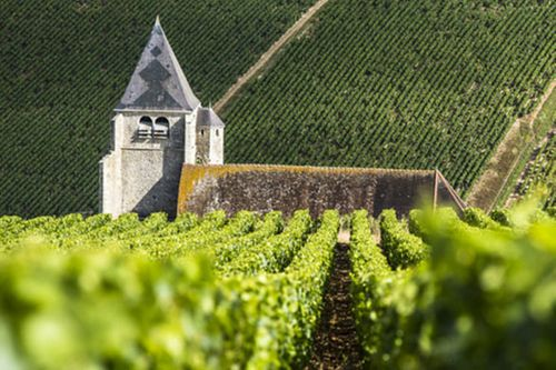The Art of Chablis